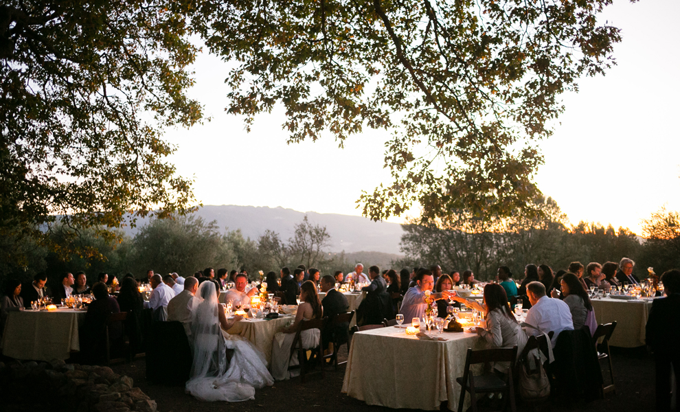Beautiful Outdoor Reception